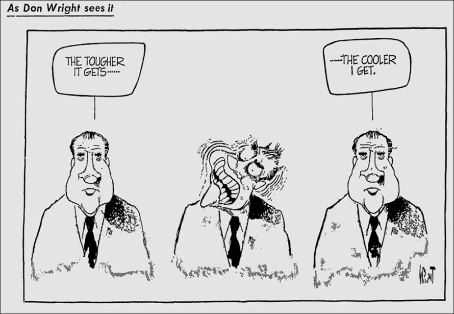 Watergate Nixon Cartoon