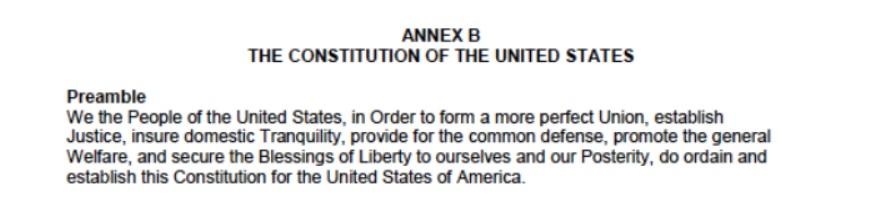 NoDAPL Protest FEMA Constitution